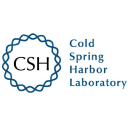 Cold Spring Harbor Laboratory logo icon