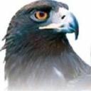 Ziarul Curentul logo icon