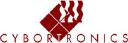 Cybortronics Inc. logo