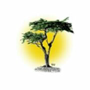 Cypress Search, LLC logo