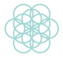 Daily Concepts logo icon