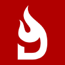 Daily Dispatch logo icon