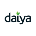 Daiya Foods logo icon