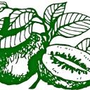 Daleys Fruit Tree Nursery logo icon