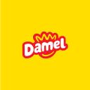 DAMEL GROUP SL Company Profile