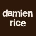 Damienrice logo icon