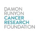 Damon Runyon logo icon