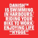 Danish logo icon