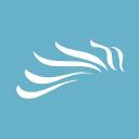 Dark Horse Agency logo icon