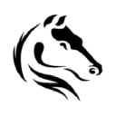 Darkhorse Analytics logo icon