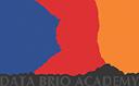 Data Brio Academy logo icon
