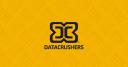 Datacrushers logo icon