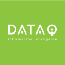 Data Iq logo icon