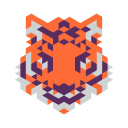 Data Tiger logo icon