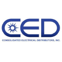 Dauphin Electric logo icon