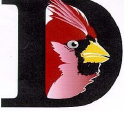 Davison High School logo icon