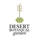 Dbg logo icon