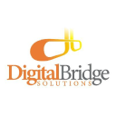Digital Bridge Solutions Logo