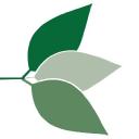 Developmental Disabilities Nurses Association logo icon