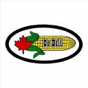 De Dell Seeds logo icon
