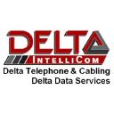 Delta Intellicom logo icon