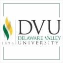 Del Val logo icon
