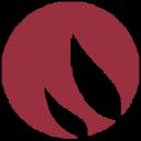 Delvy logo icon