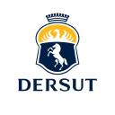 Dersut logo icon