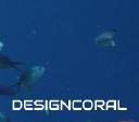 Design Coral logo icon
