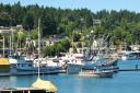 Destiny Harbor Tours logo