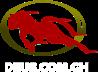 Deus.com.gh Considir business directory logo