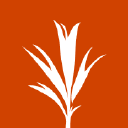 Development Seed logo icon