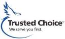 DFW Insurance logo