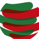 Dgs logo icon
