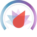 Dialsmith logo icon