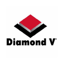 Diamond V logo icon