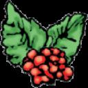 Dickens Fair logo icon