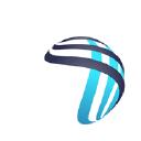 Dickson One logo icon