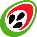 Digimedia logo icon