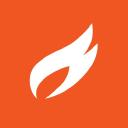 Digital Fire logo icon