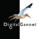 Digital Gannet logo icon