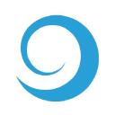 Digital Snowball logo icon