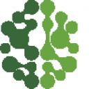 Digital Treetop logo icon