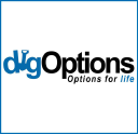 Dig Options logo icon