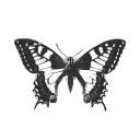 Di Paola logo icon