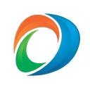 Directnic logo icon