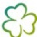 Discovering Ireland Vacations logo icon