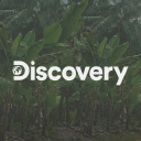 Discovery logo icon