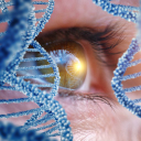 Discovery Eye Foundation logo icon