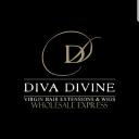 Diva Divine logo icon